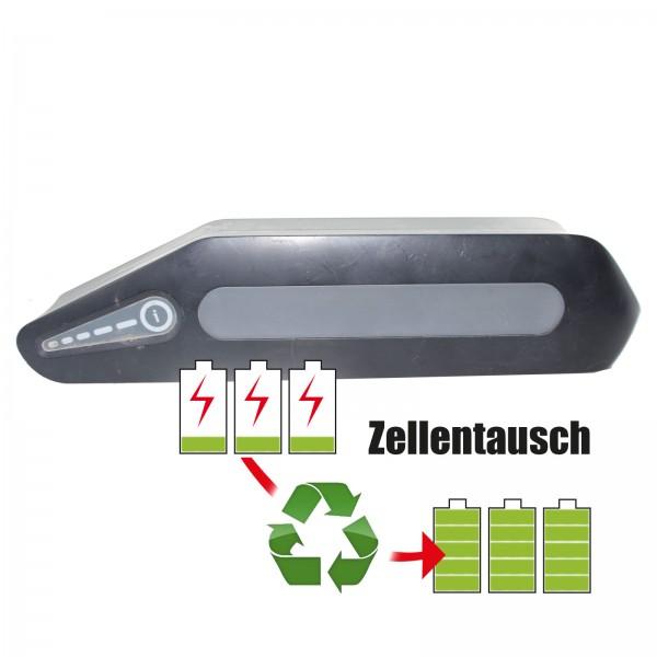 Akkureparatur - Zellentausch kompatibel für Alber /BMZ E-Bike Akku 36V von 14,5Ah/525Wh bis 17,25Ah/625Wh