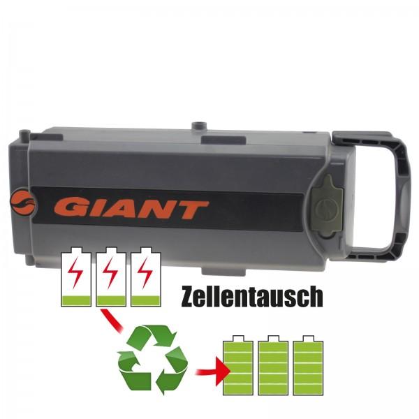 Akkureparatur - Zellentausch kompatibel für Giant E-Bike 25,0V von 13,0Ah / 325Wh bis 17,3Ah / 431Wh