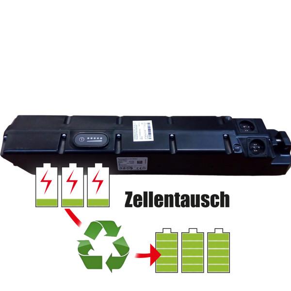 Akkureparatur - Zellentausch kompatibel für BMZ Ebike 37,0V   17,3Ah / 638,25Wh
