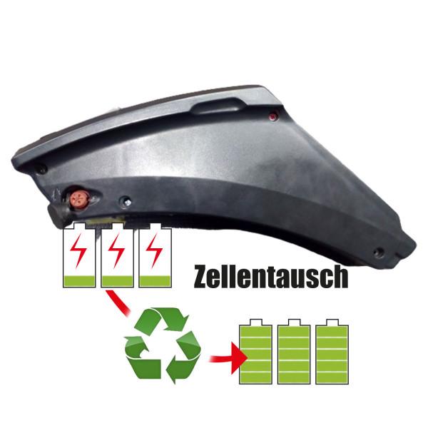 Akkureparatur - Zellentausch kompatibel für Panterra E-Bike 37,0V von 10,4Ah / 385Wh bis 13,8Ah / 511Wh