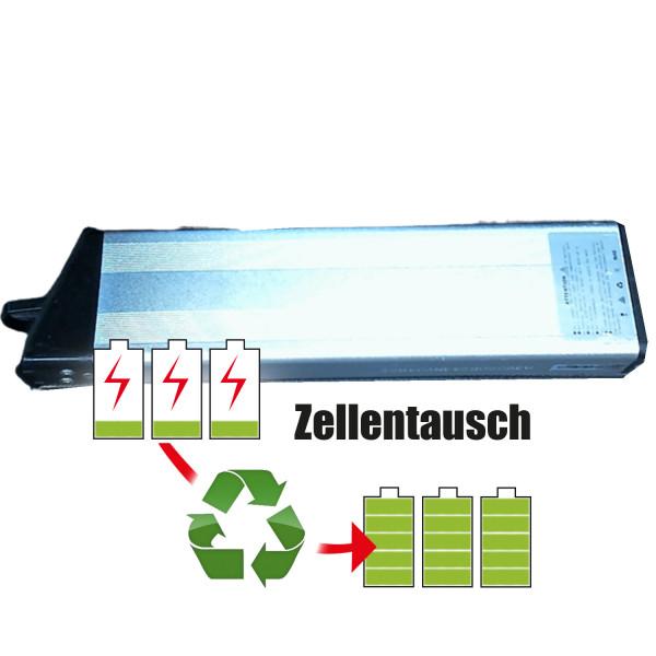 Akkureparatur - Zellentausch kompatibel für TN E-Bike 24,0V   6,9Ah / 165,6Wh