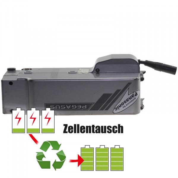 Akkureparatur - Zellentausch kompatibel für Pegasus E-Bike 24,0V   9,0Ah / 216Wh