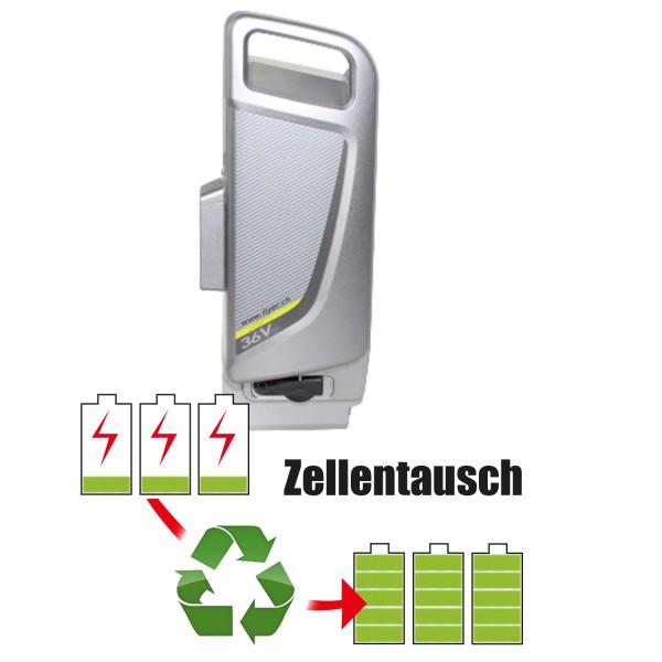Akkureparatur - Zellentausch kompatibel für Panasonic Ebike 36,0V   13,8Ah / 496,8Wh