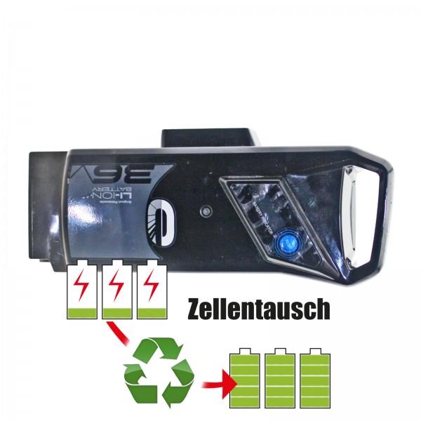 Kettler/Derby Cycle E-Bike - Zellentausch 36V von 12,9Ah/465Wh bis 20,7AH/746Wh