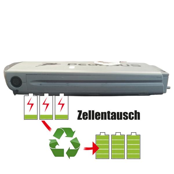 Akkureparatur - Zellentausch kompatibel für TranzX (Pegasus) E-Bike 36,0V von 10,4Ah / 374Wh bis 13,8Ah / 497Wh
