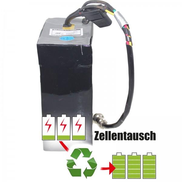 Akkureparatur - Zellentausch kompatibel für Jiangsu Front New Energy Golf Akku Trolley 12 Volt von 28,5AhAh/342Wh bis 48,36Ah/580Wh