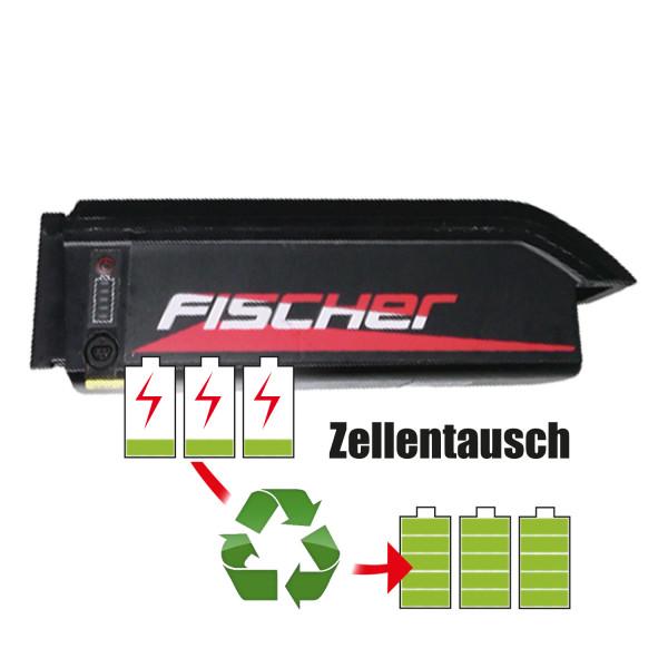 Akkureparatur - Zellentausch kompatibel für Joycube Ebike 48,0V von 10,2Ah / 490Wh bis 13,8Ah / 662Wh