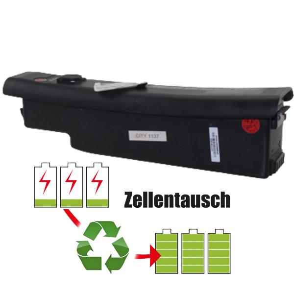 Akkureparatur - Zellentausch kompatibel für NeoX Ebike 48,0V   10,4Ah / 496,8Wh