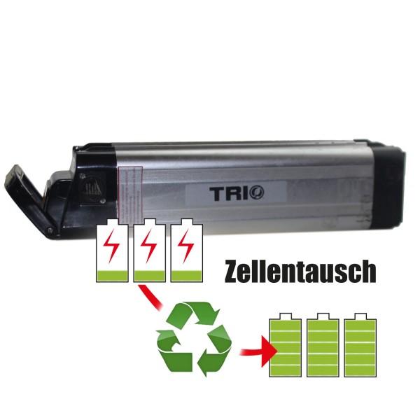 Akkureparatur - Zellentausch kompatibel für AE Energy /Advanced Electronics E-Bike Akku 24V von 11,6Ah/279Wh bis 17,25Ah/414Wh