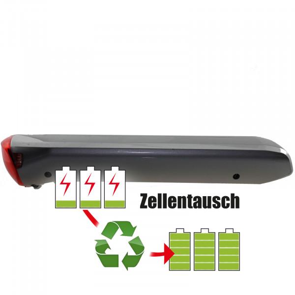 Akkureparatur - Zellentausch kompatibel für BionX E-Bike 40,7V von 7,8Ah / 317Wh bis 9,0Ah / 366Wh