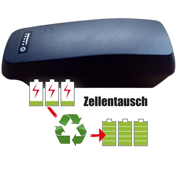 Akkureparatur - Zellentausch kompatibel für BMZ Ebike 36,4V | 13,8Ah / 501,63Wh
