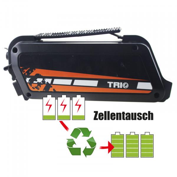 Akkureparatur - Zellentausch kompatibel für Advanced Electronics E-Bike 48,0V von 11,6Ah / 557Wh bis 13,8Ah / 662Wh