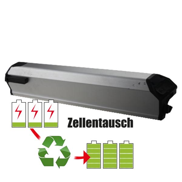 Akkureparatur - Zellentausch kompatibel für Zhejiang Tianneng Energy Technology Co.LTD Ebike 36,0V von 10,4Ah / 374Wh bis 13,8Ah / 497Wh