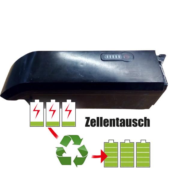 Akkureparatur - Zellentausch kompatibel für Phylion - Joycube Ebike 36,0V von 10,2Ah / 367Wh bis 13,8Ah / 497Wh